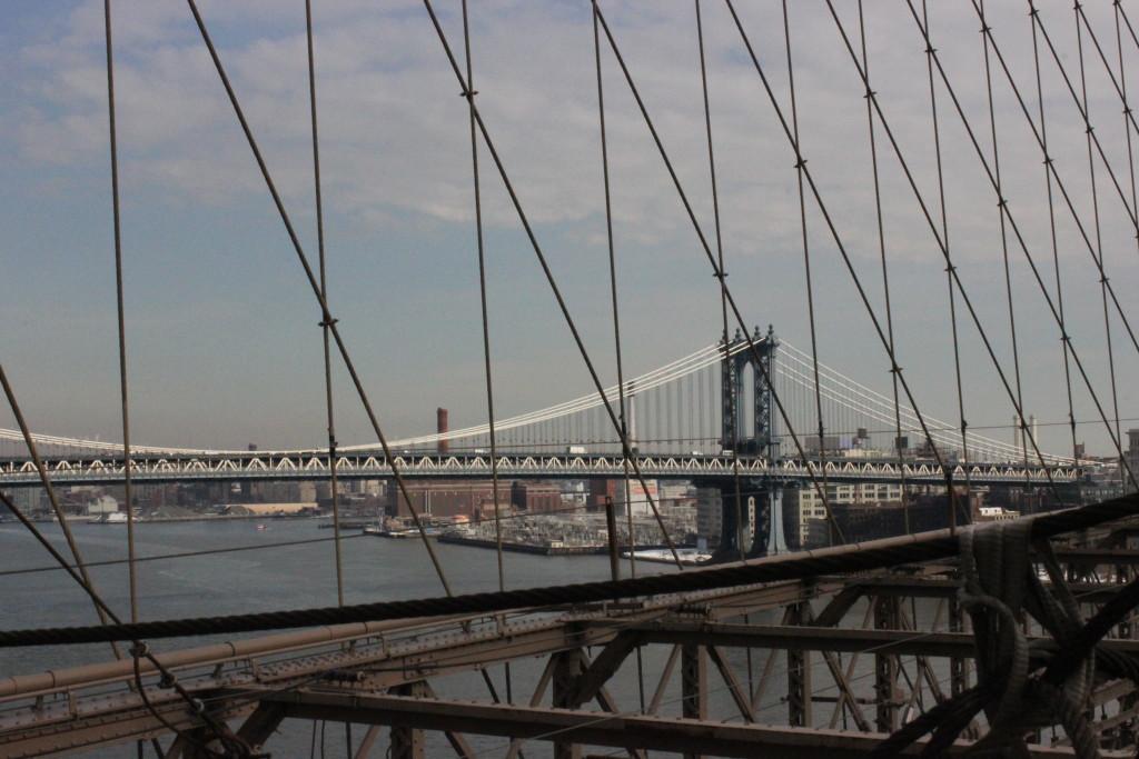 New York (53)