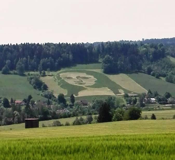 FOTOzajímavost: KDE se vzala, TU se vzala..pole v Dolní...